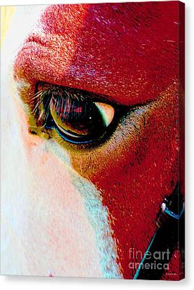 Within The Horse's Eyes Canvas Print