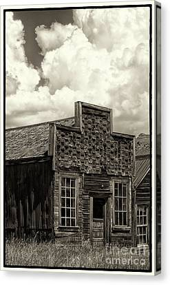 Withstanding The Years Canvas Print by Sandra Bronstein