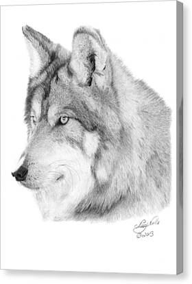 Wolf - 006 Canvas Print by Abbey Noelle