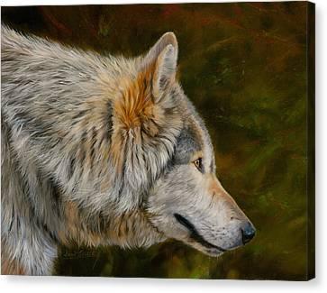 Wolf 4 Canvas Print