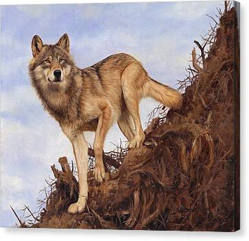 Wolf And Tree Root Canvas Print