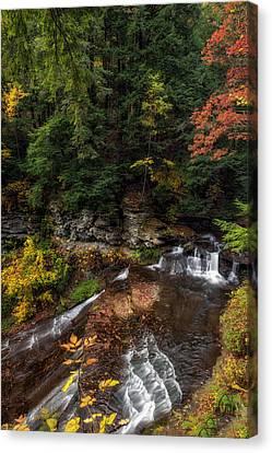 Wolf Creek Falls Canvas Print by Mark Papke