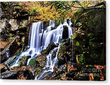 Wolf Creek Falls Canvas Print by Thomas R Fletcher