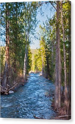 Wolf Creek Flowing Downstream  Canvas Print by Omaste Witkowski
