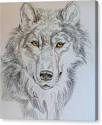 Wolf Eyes  Canvas Print by Gracia  Molloy