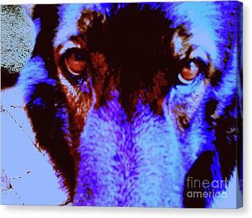 Wolf Eyes Canvas Print by Nina Kaye