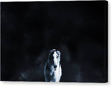 Wolf Like Sight Hound Canvas Print by Christian Lagereek