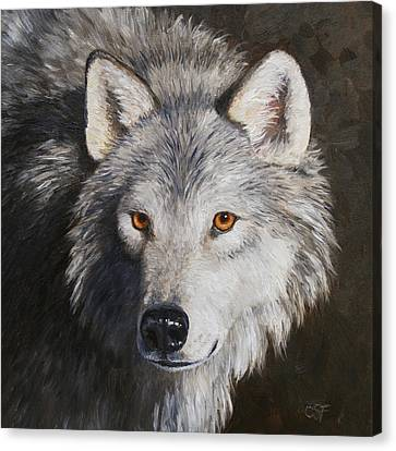 North American Wildlife Canvas Print - Wolf Portrait by Crista Forest