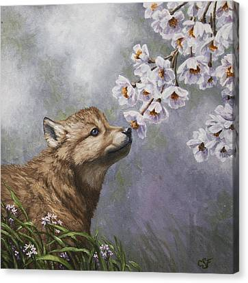 Wolf Pup - Baby Blossoms Canvas Print by Crista Forest