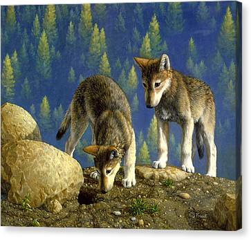 Wolf Pups - Anybody Home Canvas Print by Crista Forest