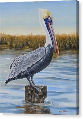 Canvas Print featuring the painting Wolf River Pelican by Phyllis Beiser