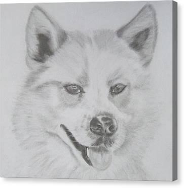 Wolf The Husky Canvas Print