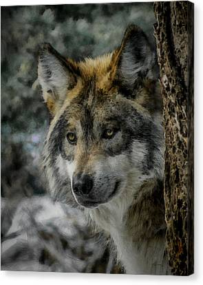 Wolf Upclose Painterly Canvas Print by Ernie Echols