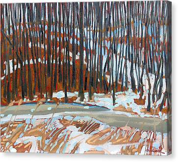 Snow Melt Canvas Print - Wolfson's Woods by Phil Chadwick