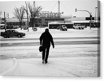 Crosswalk Canvas Print - woman crossing the road towards supermarket 8th street Saskatoon Saskatchewan Canada by Joe Fox