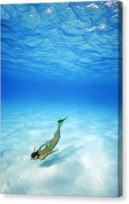 Woman Free Diving Canvas Print by M Swiet Productions