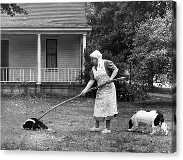 Woman Gently Moves A Skunk Canvas Print by Underwood Archives