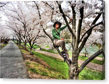 Woman In Tree Canvas Print by Dan Friend
