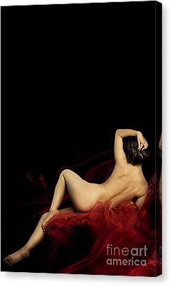 Provocative Canvas Print - Woman by Jelena Jovanovic