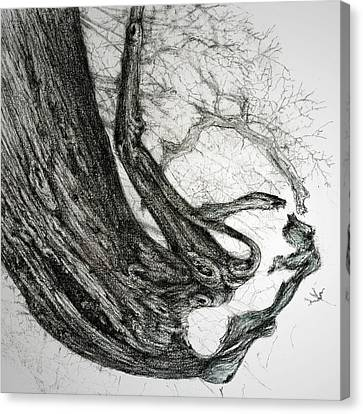 Canvas Print featuring the drawing Woman by Penny Collins