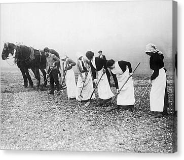 Women Learning Farming Canvas Print by Underwood Archives