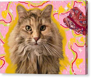 Wonder Kitty Canvas Print