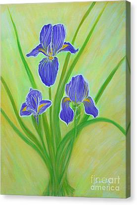 Wonderful Iris Flowers. Inspirations Collection. Canvas Print