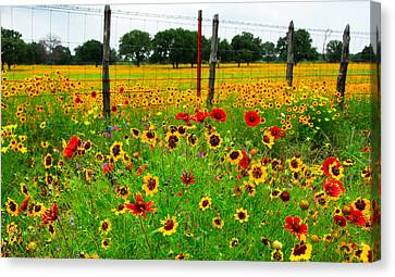 Wonderful Wildflowers Canvas Print