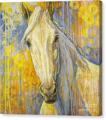 Wondering Canvas Print by Silvana Gabudean Dobre
