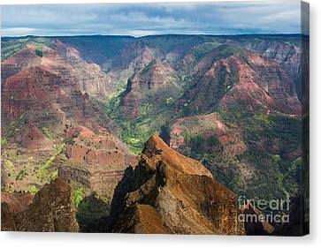 Wonders Of Waimea Canvas Print by Suzanne Luft