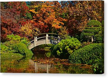 Canvas Print featuring the photograph Wood Bridge by Ricardo J Ruiz de Porras