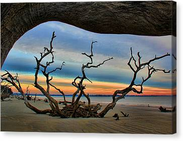 Wood Frame At Roots Beach Canvas Print by Leslie Kirk