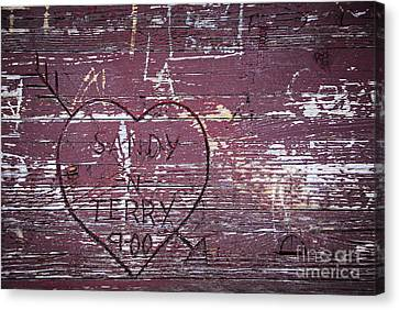 Wood Graffiti Canvas Print by Elena Elisseeva
