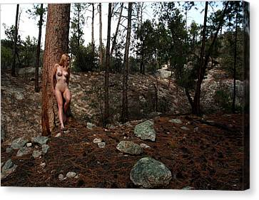 Wood Nymph Canvas Print by Joe Kozlowski