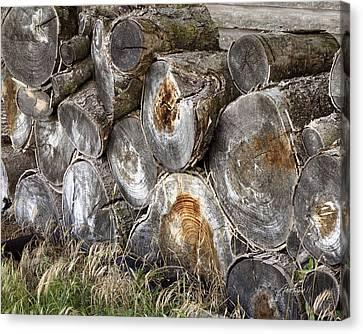Wood Pile -  Fine Art  Photograph Canvas Print by Ann Powell