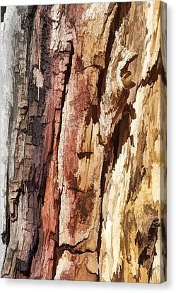 Wood Tones Canvas Print