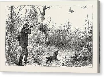 Woodcock Shooting Canvas Print by English School