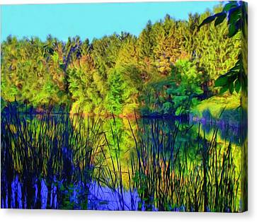 Wooded Shore Through Reeds Canvas Print by Dennis Lundell