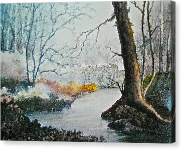 Wooded Stream Canvas Print by Carolyn Rosenberger