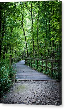 Wooden Bridge Canvas Print by Wayne Meyer