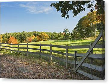 Wooden Fence In Autumn Maine Farm Pasture Canvas Print