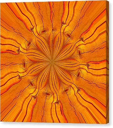 Wooden Flower Canvas Print by Brent Dolliver