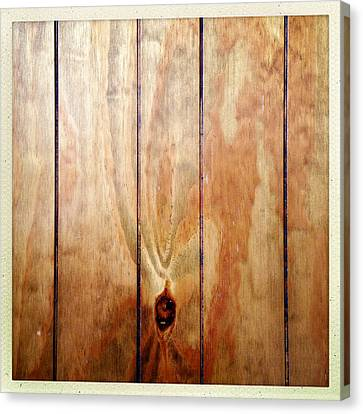 Wooden Panel Canvas Print by Les Cunliffe