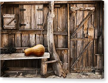 Wooden Shack Canvas Print by Carlos Caetano