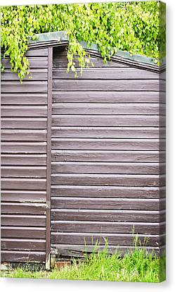Shed Canvas Print - Wooden Shed  by Tom Gowanlock