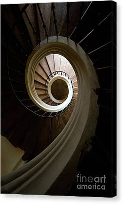 Wooden Spiral Canvas Print