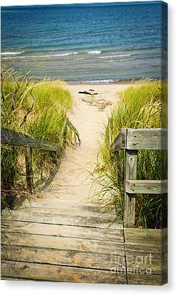 Wooden Stairs Over Dunes At Beach Canvas Print by Elena Elisseeva