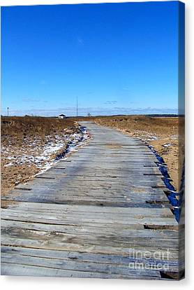 Plum Island Canvas Print