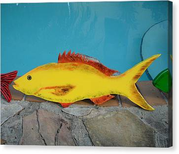 Wooden Yellow Tail Canvas Print by Val Oconnor