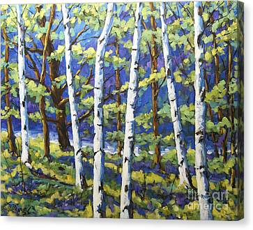 Reserved To C.s.._woodland Birches Canvas Print by Richard T Pranke